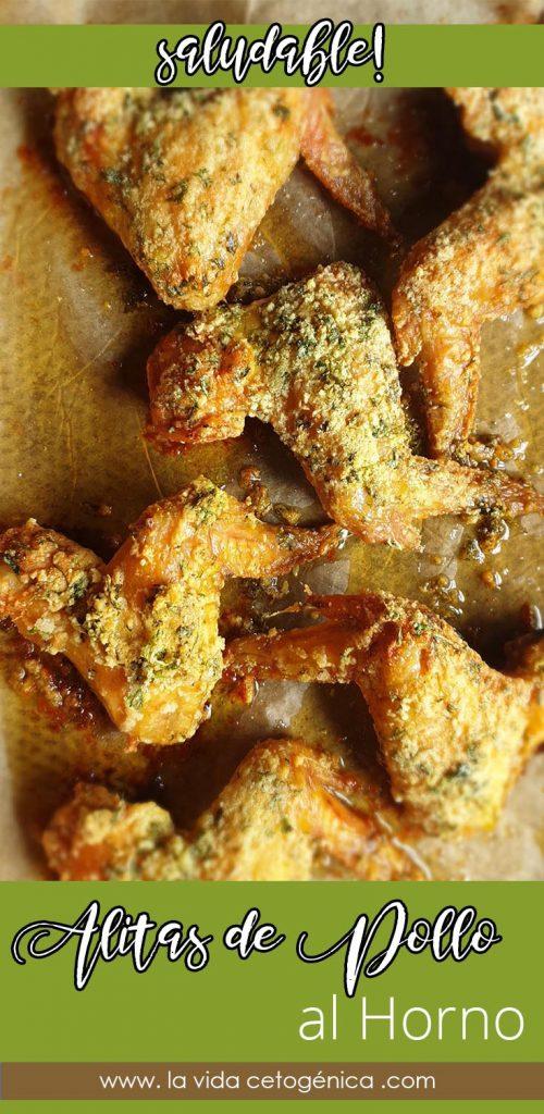alitas de pollo al horno PIN